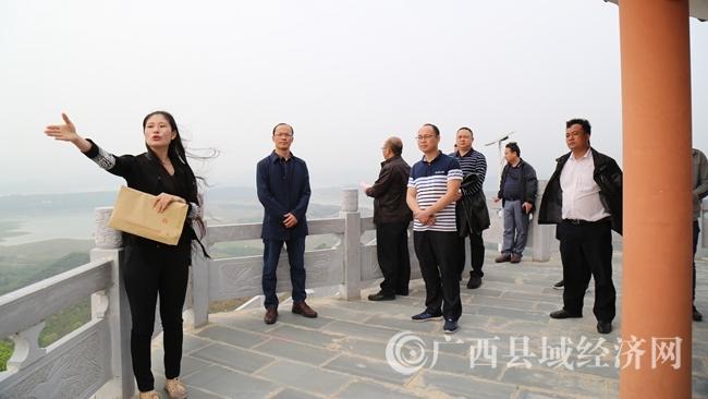 凌云县:赴右江区和那坡县调研村级集体经济