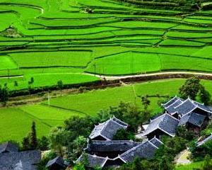第一批广西特色小镇培育名单公布 45个小镇上榜