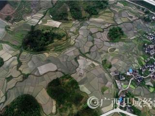融安县:东相村大地线条