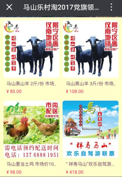 马山县乐村淘电商平台