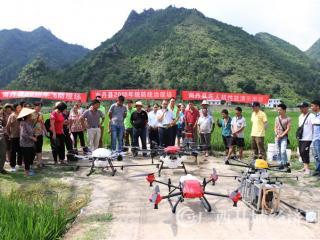 南丹县:植保无人机统防统治显身手