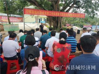 """宁明县:驻村扶贫经验交流会开到""""大榕树课堂"""""""