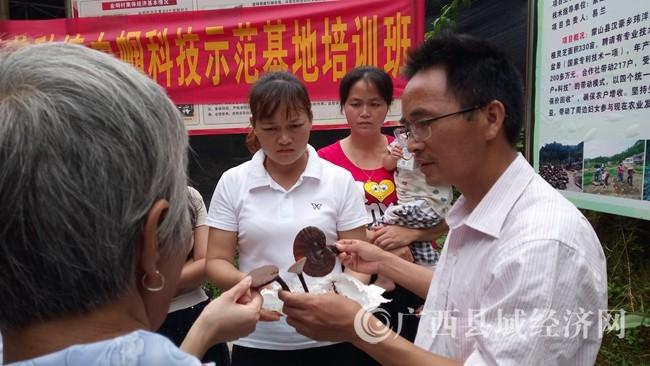 蒙山县妇联举办灵芝种植巾帼科技示范基地培训班