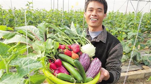 南宁农村改革逐步向现代农业转变 吸引青年回乡创业