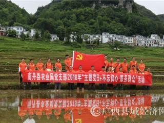 南丹县:积极开展稻田艺术画创作  书写大美农业