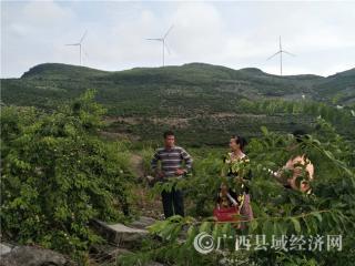 恭城县:西岭镇劳模李春明带领村民脱贫