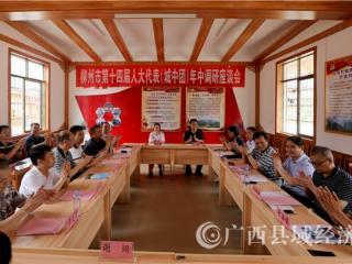 柳州市人大代表到融安县开展专题调研