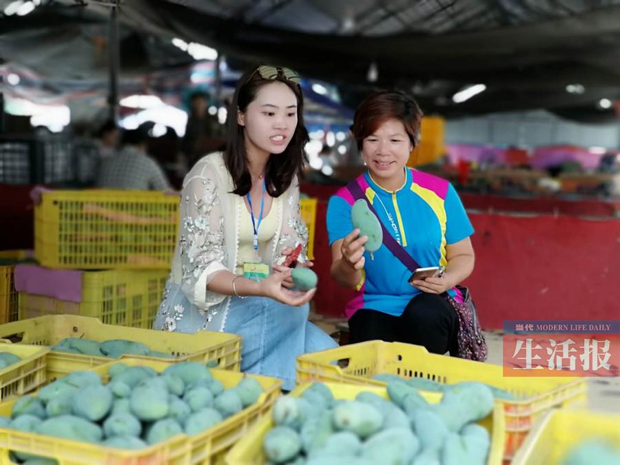 2018田东芒果节盛大开启:芒果有文化 笑迎八方客