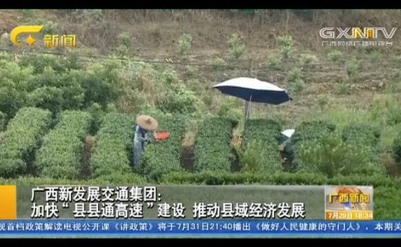 """广西新发展交通集团:加快""""县县通高速""""建设 推动县域经济发展"""
