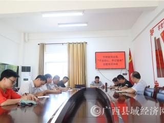 """宁明县司法局开展""""不忘初心,牢记使命""""主题党日活动"""