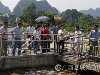 平果县政协组织开展乡镇污水垃圾处理调研活动