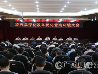 凌云县:奋力开创经济高质量发展新局面