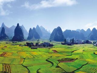 柳江区:抓住撤县设区机遇开创新局面 成为县域经济发展排头兵