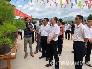 平桂区:党旗领航  乡村旅游开出扶贫花