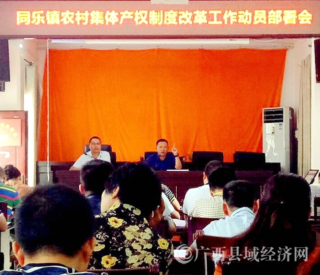 乐业县:同乐镇启动农村集体产权制度改革工作