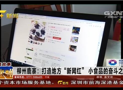 """鹿寨县:打造地方""""新网红"""" 小食品的奋斗之路"""