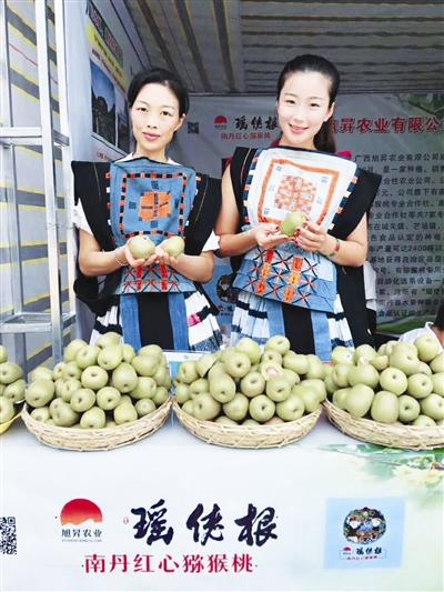 """南丹县:""""互联网+扶贫""""助力生态红心猕猴桃产业"""