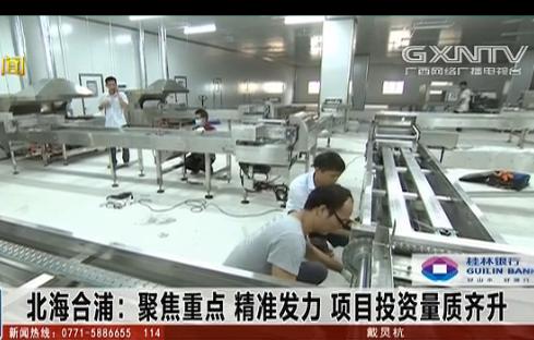 合浦县:聚焦重点 精准发力 项目投资量质齐升