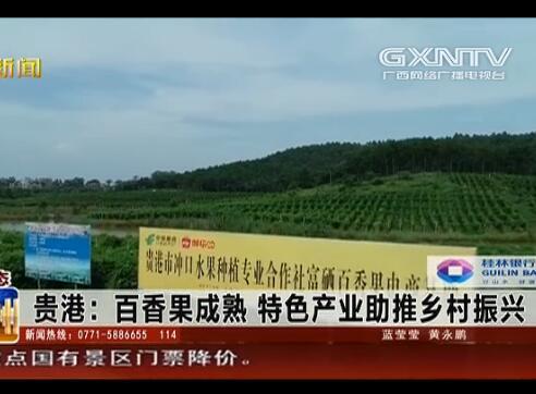 贵港:百香果成熟 特色产业助推乡村振兴