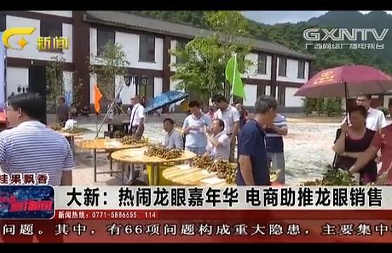 大新县:热闹龙眼嘉年华 电商助推龙眼销售