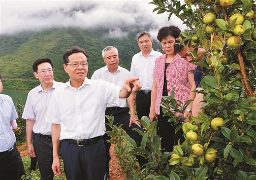 陈武:全力推进深度贫困地区脱贫攻坚 让革命老区群众有实实在在的获得感