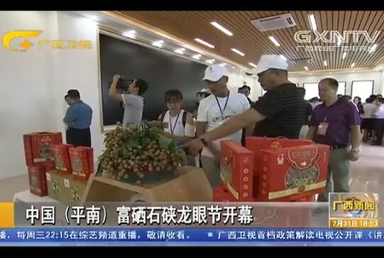 中国(平南)富硒石硖龙眼节开幕
