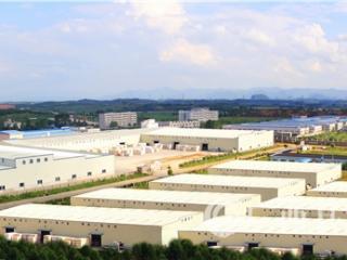 平桂区:创新产业发展和新型政商合作两大模式 招商引资工作实现稳定增长