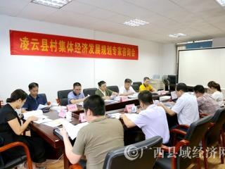 《凌云县村集体经济发展规划》专家咨询会召开