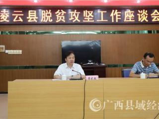 百色市委副书记周武红到凌云县开展脱贫攻坚调研工作