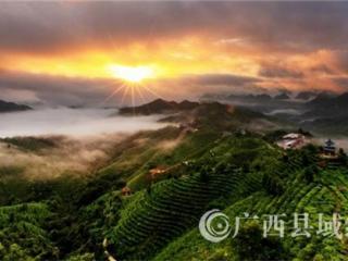 凌云县:狠抓旅游项目建设