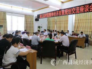 凌云县村级集体经济发展规划交流座谈会顺利召开