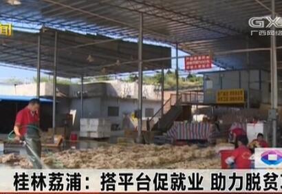 荔浦市:搭平台促就业 助力脱贫攻坚