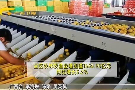 前三季度广西经济运行稳中向好 全区生产总值同比增长7.0%