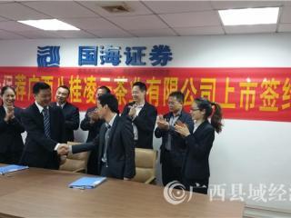 广西八桂凌云茶业有限公司----企业概述