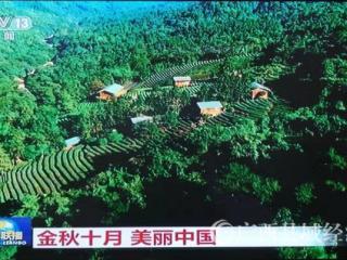 平桂区:国庆黄金周实现旅游收入达1.06亿元 同比增长19.87%