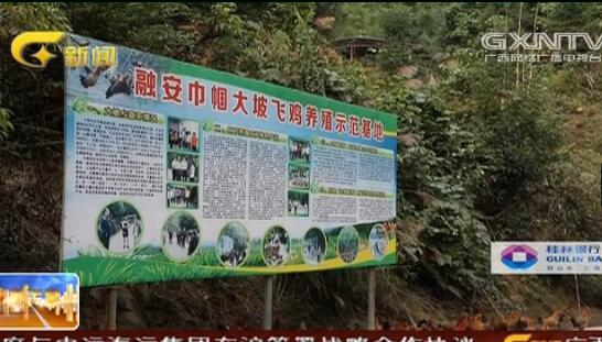 融安县:公路跟着产业走 农民脱贫有劲头