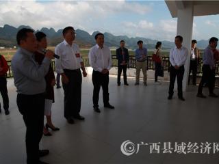 全区部分政协委员参观平果县扶贫产业