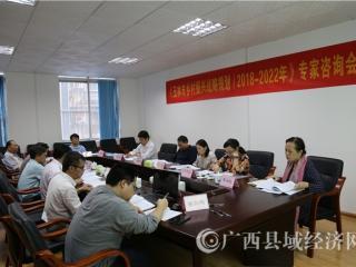县促会召开《玉林市乡村振兴战略规划》专家咨询会
