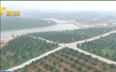 玉林:推进农村产业融合 勾画乡村振兴新蓝图
