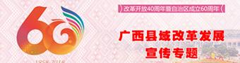 改革开放40周年暨自治区60周年大庆广西县域改革发展宣传专题