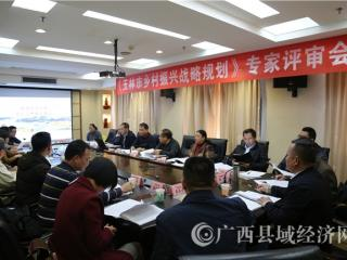 玉林市乡村振兴战略规划通过专家评审
