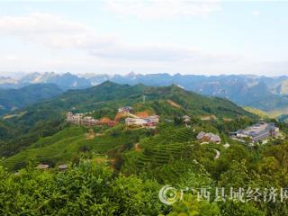 """凌云县:荣获""""国家生态文明建设示范县"""""""