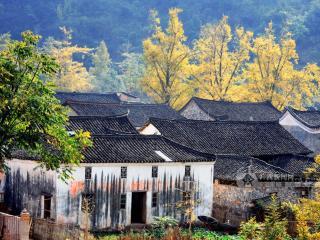 第五批中国传统村落名录公示 广西114村落入选有补助