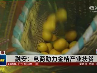 融安县:电商助力金桔产业扶贫
