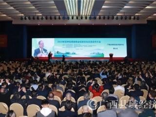 2019年世界桂商暨商会经贸文化交流合作大会今天在南宁开幕