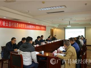 凌云县村级集体经济发展规划通过专家评审