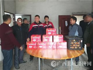 宁明乡贤会组织慰问一线作业农民工