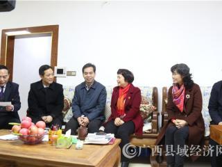 自治区政协副主席黄道伟到平果开展节前慰问