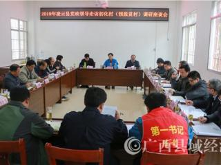 凌云县党政主要领导走访贫困村
