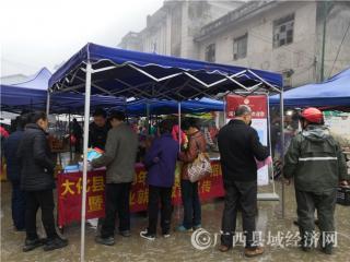 """大化县:""""春风行动""""500余人达成就业意向"""